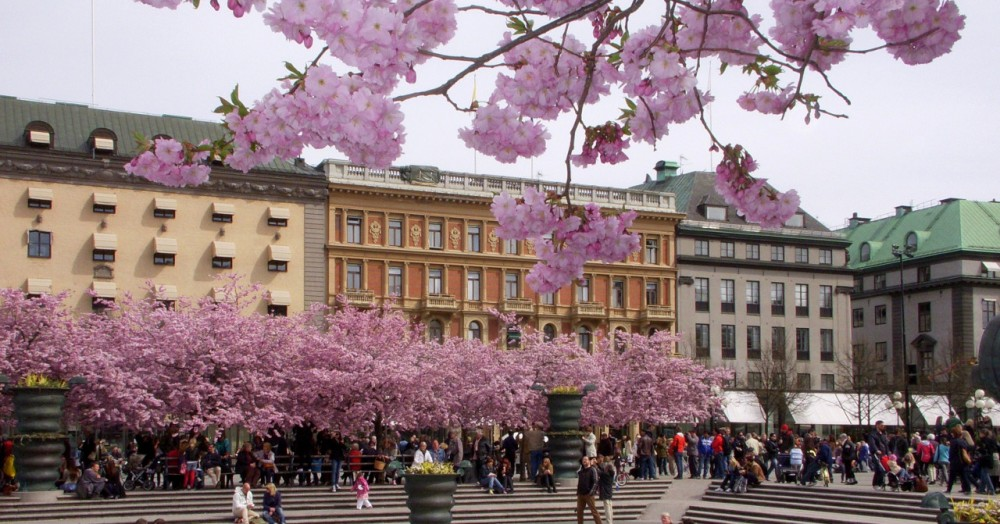 Image of Kungstradgarden in Stockholm
